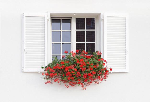 fenêtre effraction protéger protection