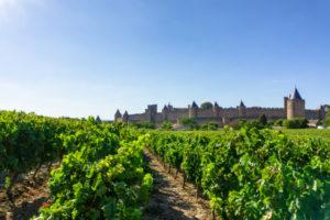 Carcassonne investir location saisonnière de vacances maison appartement